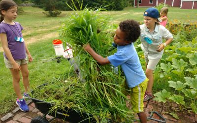 An Update on the Garden Program at the Waldorf School at Moraine Farm